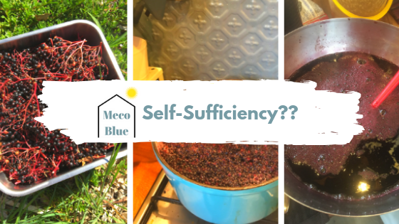 Self-Sufficiency?