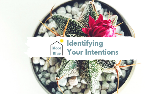 Identifying Your Intentions